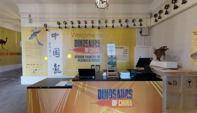 Wollaton Hall: Dinosaurs of China