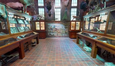 Toledo Zoo: ProMedica Museum of Natural History – Nature in Hand Exhibit