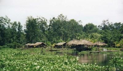 Warao Indians