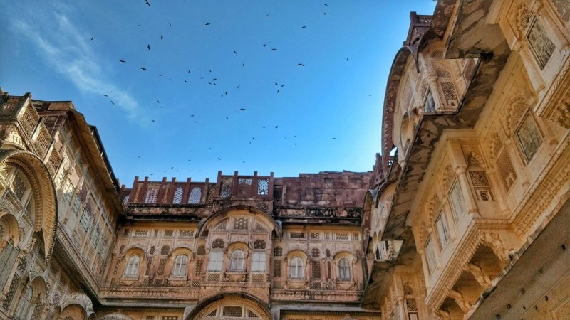 Hawks fly in gyres over the Mehrangarh fort