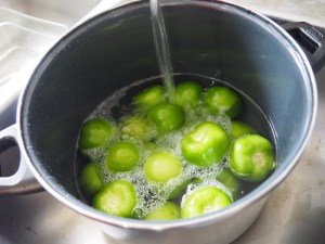 Put the tomatoes in a pot, cover them with water and let them cook.
