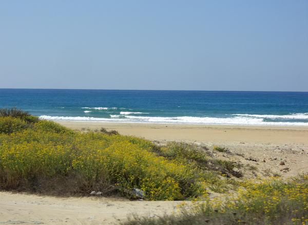 Strand bei Haifa