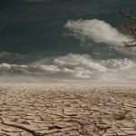 <b>התבודדות בחסידות ברסלב : הרב עופר גיסין</b>
