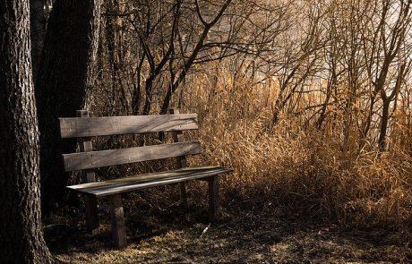 התבודדות – לדבר עם ה' / מכתביה של חיה הרצברג