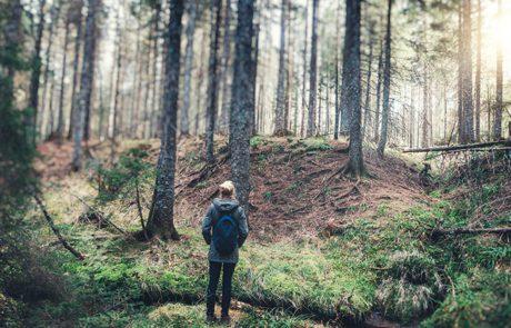 התבודדות – מדיטציה יהודית?