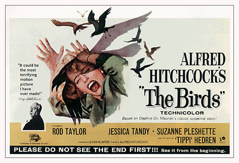 https://i0.wp.com/hitchcock.tv/mov/birds/images/birds.jpg