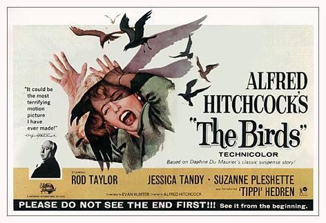 https://i0.wp.com/hitchcock.tv/mov/birds/images/birds.jpg