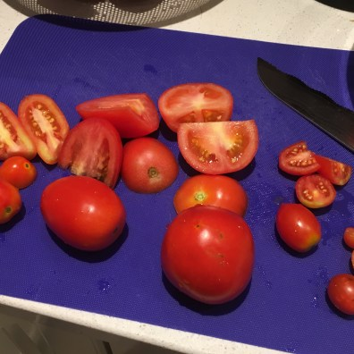From left to right, San Marzano, Roma, Heinz 57, Grape, Cherry