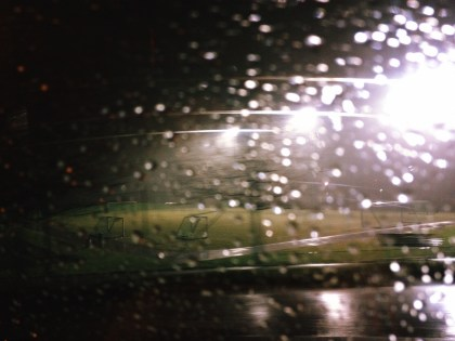 Rain at Tøyenparken