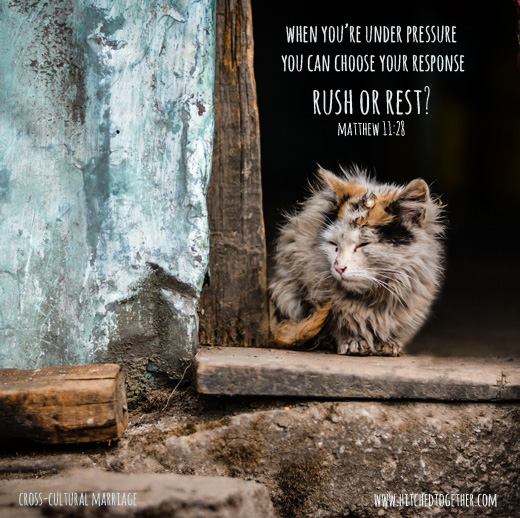 when you're under pressure you can choose your response rush or rest? Matthew 11:28