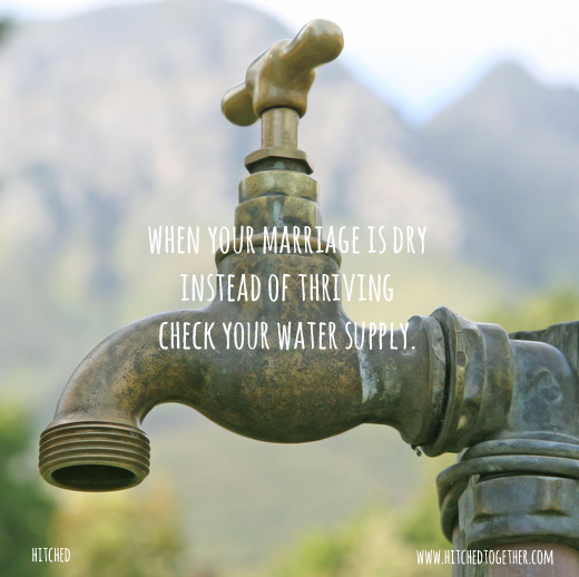 when your marriage is dry instead of thriving check your water supply.