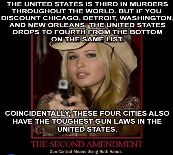 Image result for gun control memes