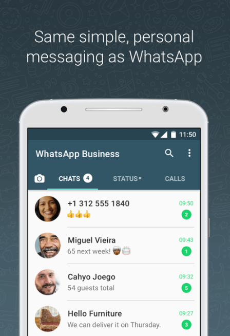 WhatsApp Business chat screen