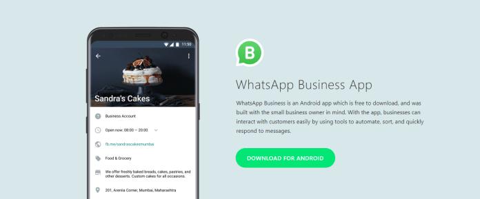 WhatsApp Business header