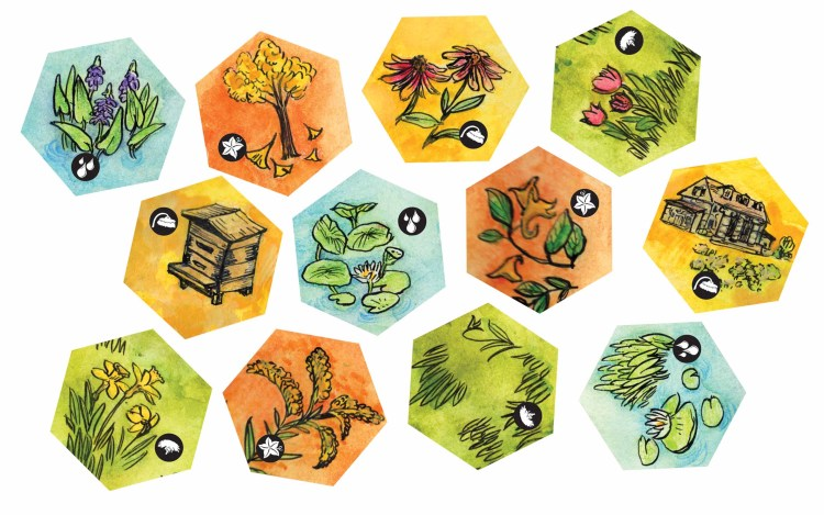 A variety of map tiles from Bee Lives representing the spring, summer, and fall seasons