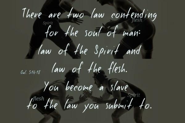 Spirit Charge-The Spirit versus the Flesh-self