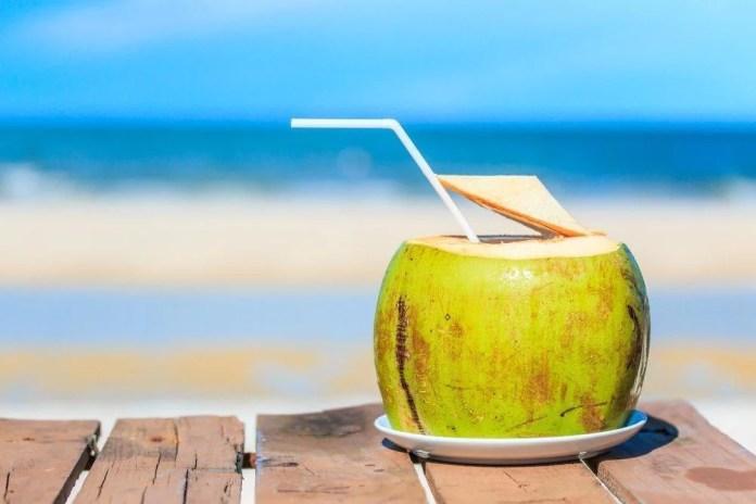Manfaat minum air kelapa