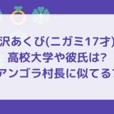 平沢あくび(ニガミ17才)の高校大学や彼氏は?アンゴラ村長に似てる?