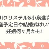 滝川クリステル&小泉進次郎|出産予定日や結婚式はいつ?妊娠何ヶ月かも!