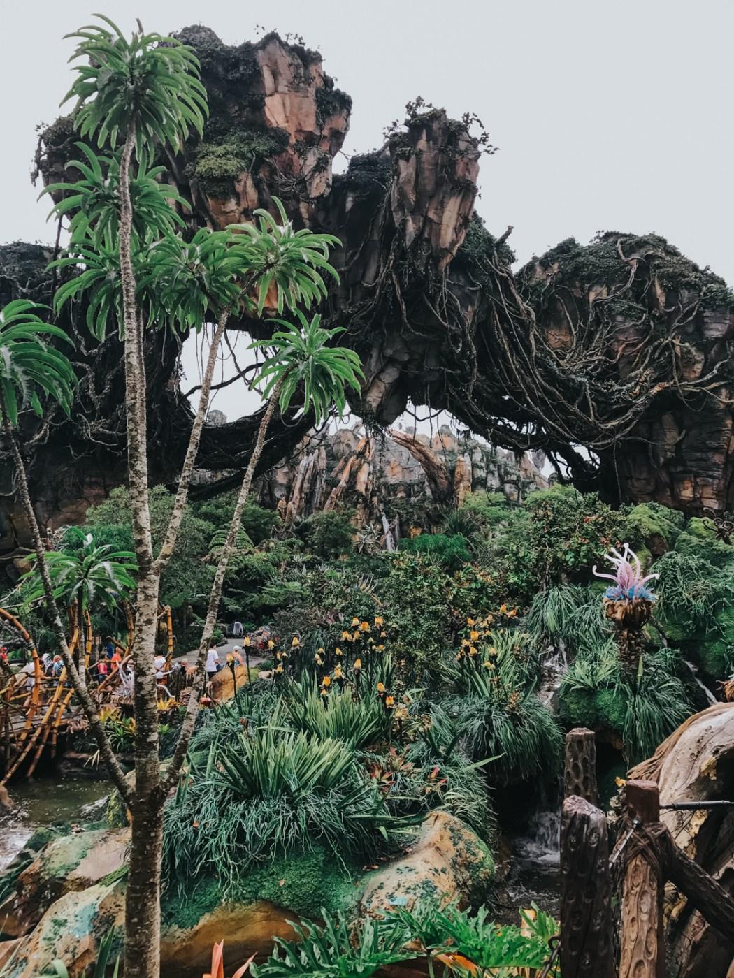 Floating rock inside Disney's Pandora: The World of Avatar