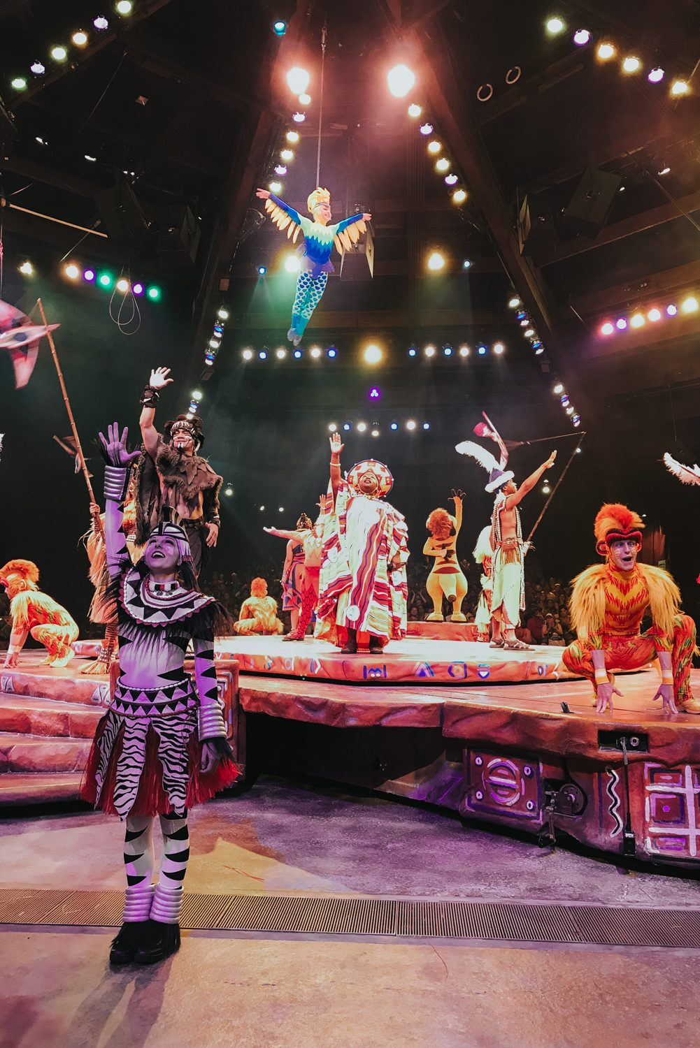 Festival of The Lion King at Animal Kingdom in Walt Disney World. This is my favorite show out of everything in Disney!