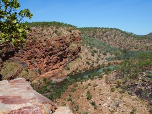 View over the gorge on our bush walk