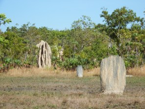 Cathedral termite mound in background, the Magnetic mound in foreground