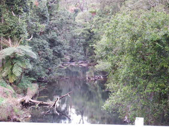 Broken River - home of the platypus