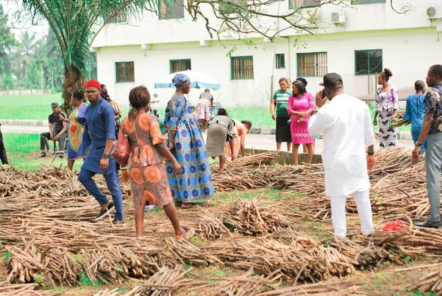 Rivers: Oyigbo council Chairman distributes new specie of cassava stem to Farmers