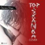 Shieshie Nitan – Top Skanka Cover(Prod. By Jay Watz)