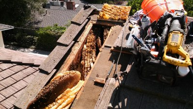 Honeycomb inside roof cavity.