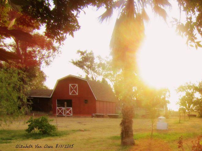August Sunrise 2