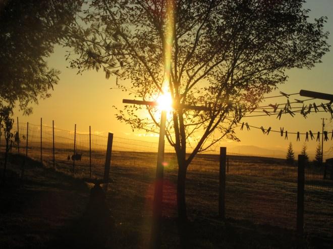 Morning Sunrise 023