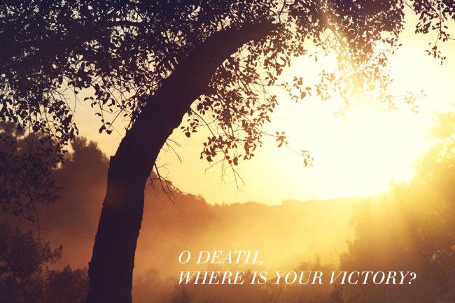 O Death Where is Thy Sting? The Way to Peace and Freedom