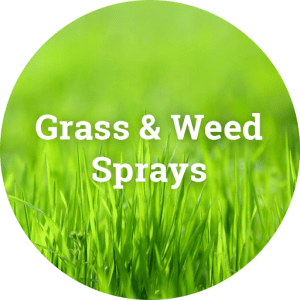 Weed & Grass Sprays