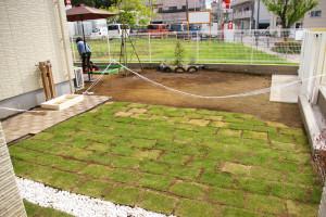 芝生も青々、外遊びもOK!建物右手の庭も、すっかり整備が進んでいました