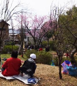 桃の木を眺めながら持参したレジャーシートをひき、思い思い過ごす人も
