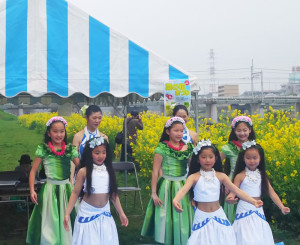 4月1日に予定、2日に順延された綱島桜まつりには出演できなかったという大倉山で活動している「オリラニ フラスタジオ」のフラダンスも好評でした