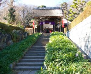 新羽駅から徒歩5分の西方寺。長い参道や茅葺きの本堂が特長。境内には四季折々の花が咲くという
