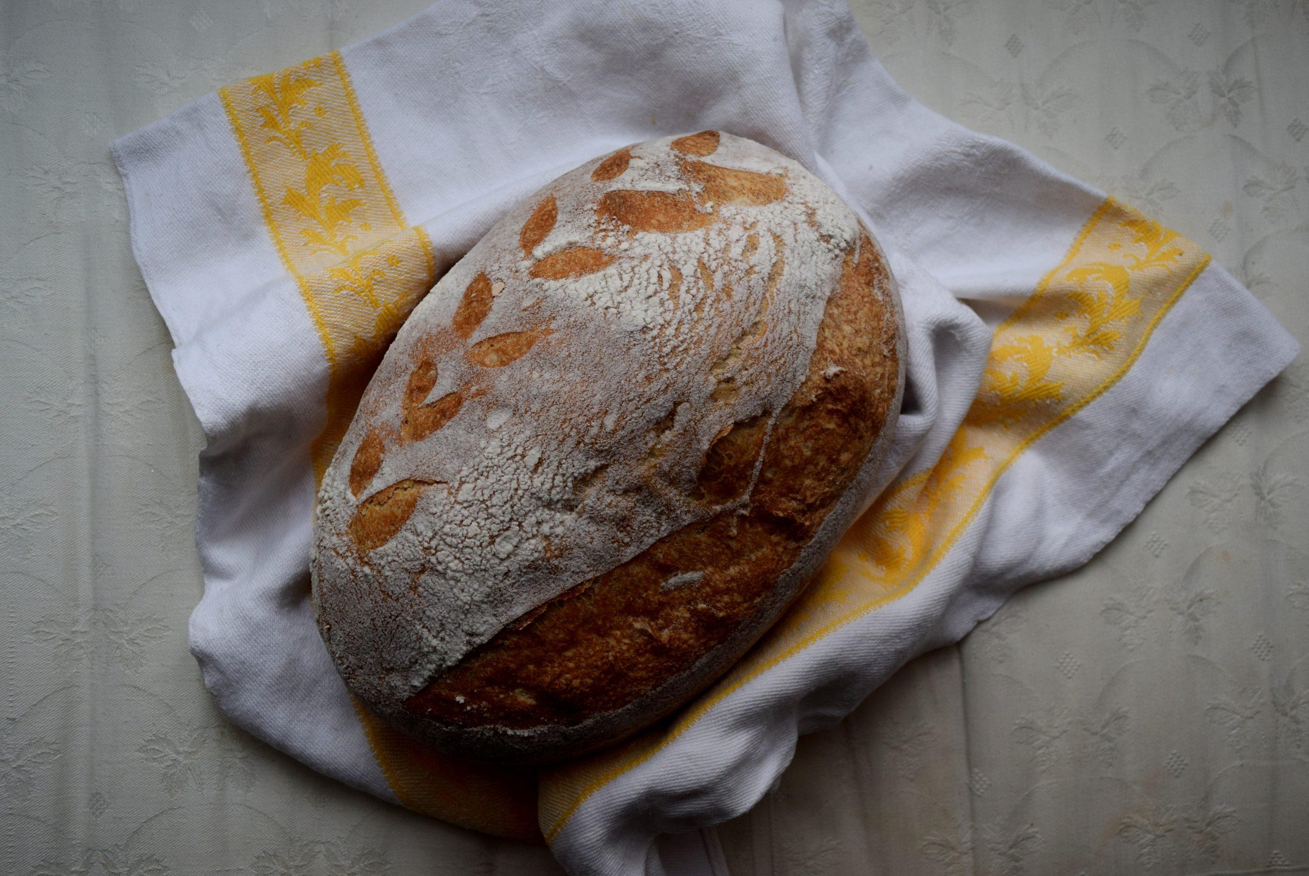 bread, wheat, sourdough