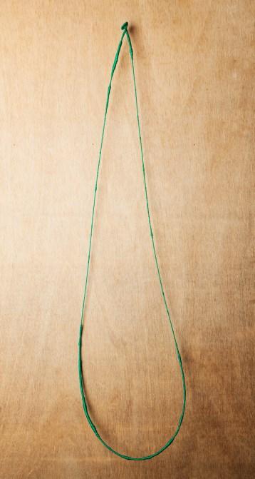 Green loop1