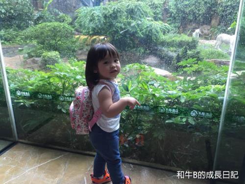 【帶著BB去旅行】辦理中國旅遊證件 + 出入境流程|和牛媽媽