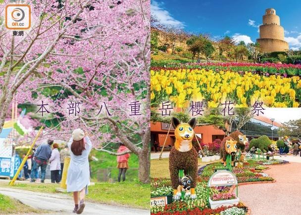 沖繩一月「花」呢Look!|即時新聞|生活|on.cc東網