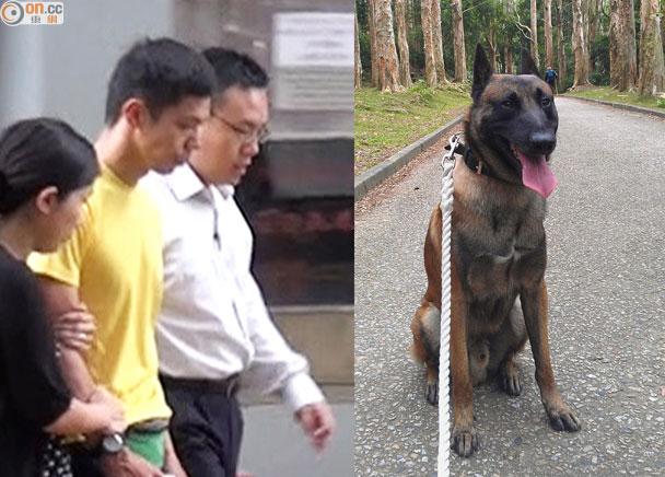 Dax2骨灰將撒警犬隊總部公園草地|即時新聞|港澳|on.cc東網