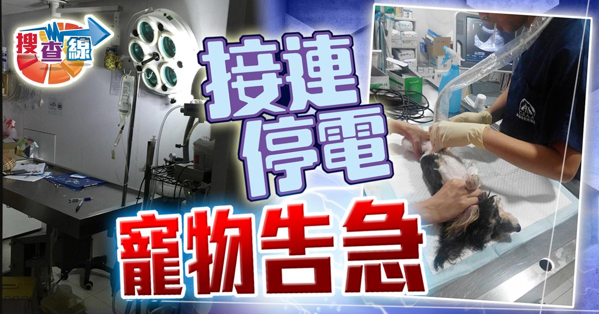 搜查線:唐樓突擊大停電 動物醫院寵物告急|即時新聞|港澳|on.cc東網