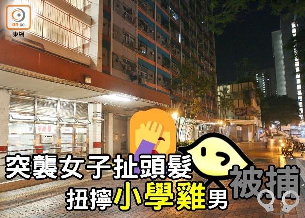 女子竹園南邨被突襲扯頭髮 警拉扭扭擰擰男|即時新聞|港澳|on.cc東網