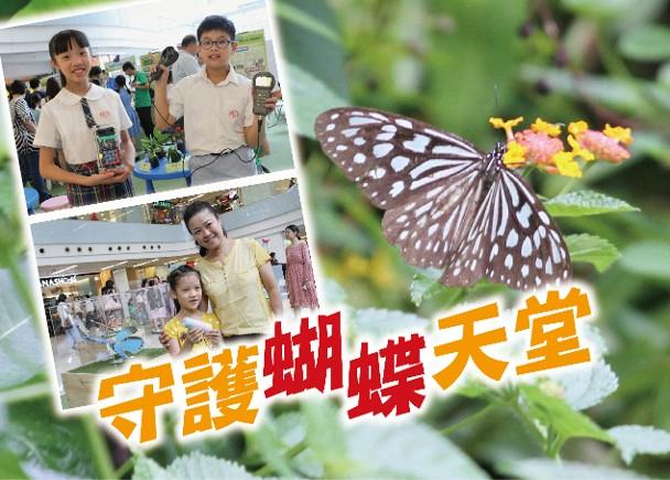 綠色先鋒:感觀蝶變 推廣蝴蝶保育理念 即時新聞 港澳 on.cc東網