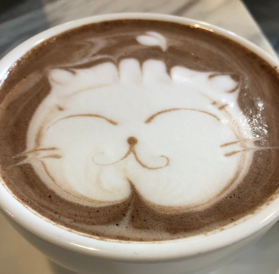 DSE 學生讀書 Cafe 推介: 沙田  Whitewood Coffee 熱朱古力