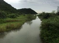River and marshland