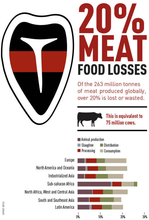 Meat Loss by UNFAO